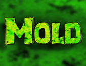 Cleaning Up Mold